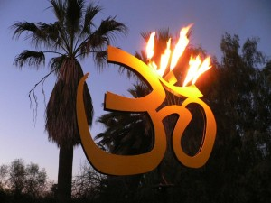 Fire Garden Flaming Om
